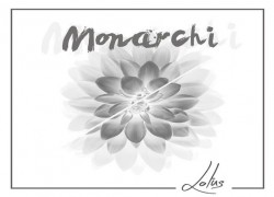 Monarchi – Lotus